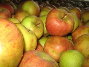 Apfelmeer
